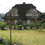 Reetdach Doppelhaus